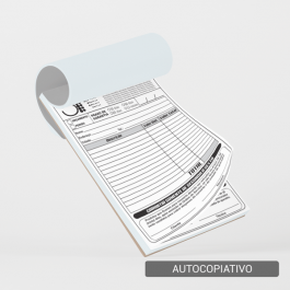 Talão - Autocopiativo - 20x15cm Sulfite 20x15cm 1x0 (só frente)  Corte Reto T4006