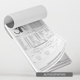 Talão - Autocopiativo - 20x30cm Sulfite 20x30cm 1x0 (só frente)  Corte Reto T4008
